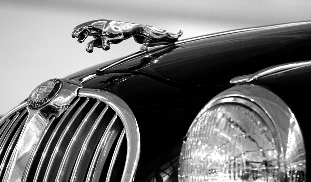 David Disiere Blog Jaguar